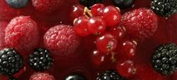 Epatite A e frutti di bosco: 1.300 i casi in Italia
