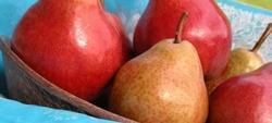 Pesticidi in frutta e verdura: come togliere le tracce