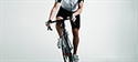 Mountain bike prove su due ruote