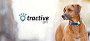 Tractive: il gps per gli amici a quattro zampe. Utile ma costoso