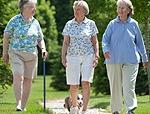Osteoporosi attenzione ai bifosfonati